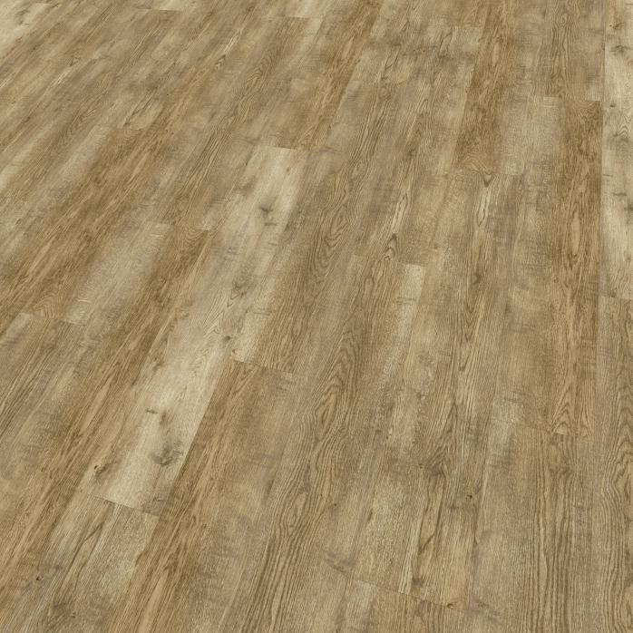 Essendon Oak Image